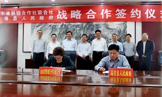 高青县人民政府与山东省供销合作社联合社签订战略合作协议..